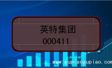 英特集团上市编码(000411)