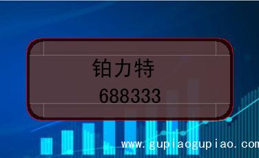 铂力特股票代码(688333)