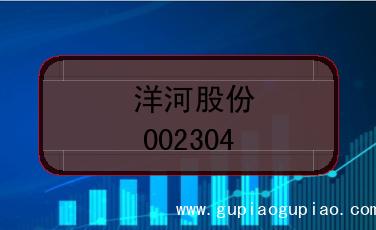 洋河股份上市代码(002304)